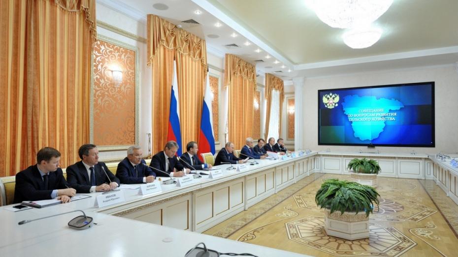 Президент назвал Воронежскую область одним из лидеров по сельхозпроизводству