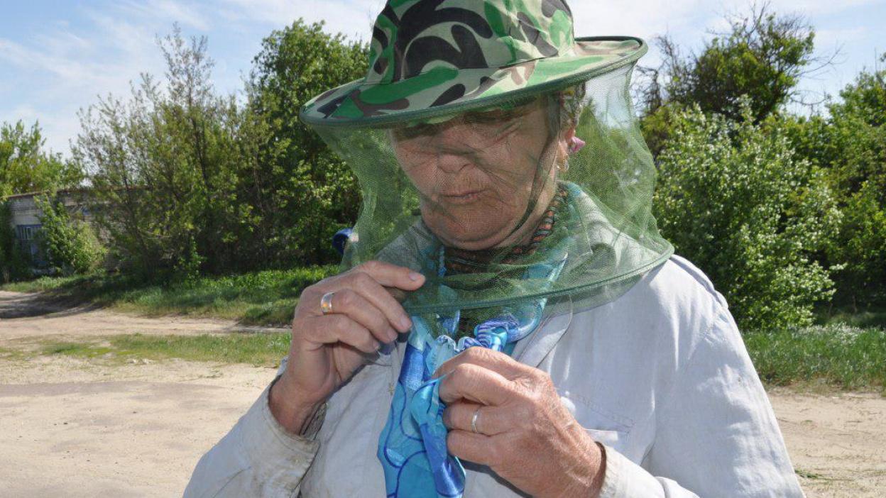 Воронежскую область атаковало неимоверное  количество комаров