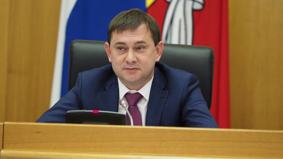 Воронежская облдума предварительно запланировала рассмотрение 38 инициатив в 2019 году