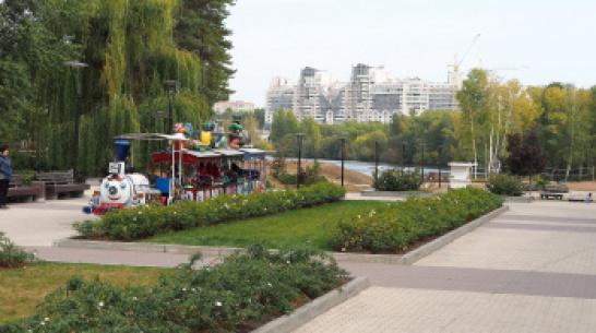 В Воронеже по нацпроекту благоустроят 2 парка и сквер
