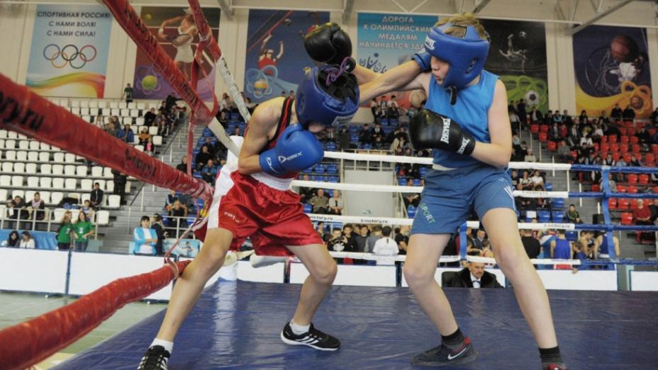 В Борисоглебске межрегиональный турнир по боксу пройдет с 19 по 21 апреля