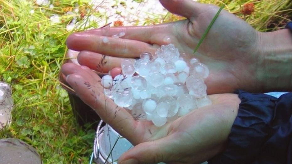 Скадовським фермерам доведеться підраховувати збитки після дощу