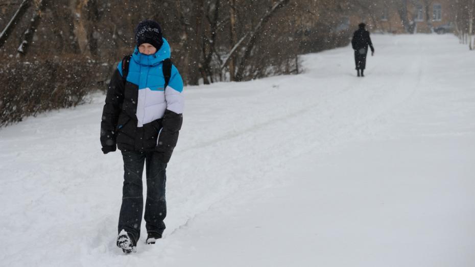Первые выходные декабря в Воронеже будут морозными и снежными