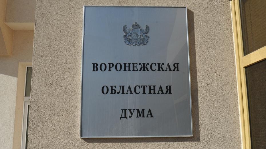 Воронежская облдума увеличила финансирование соцобъектов Кантемировского района