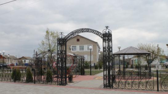В петропавловском сквере Молодоженов высадили деревья и кустарники