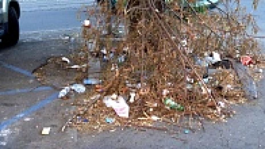 Горожан просят прислать фото грязных мест Воронежа