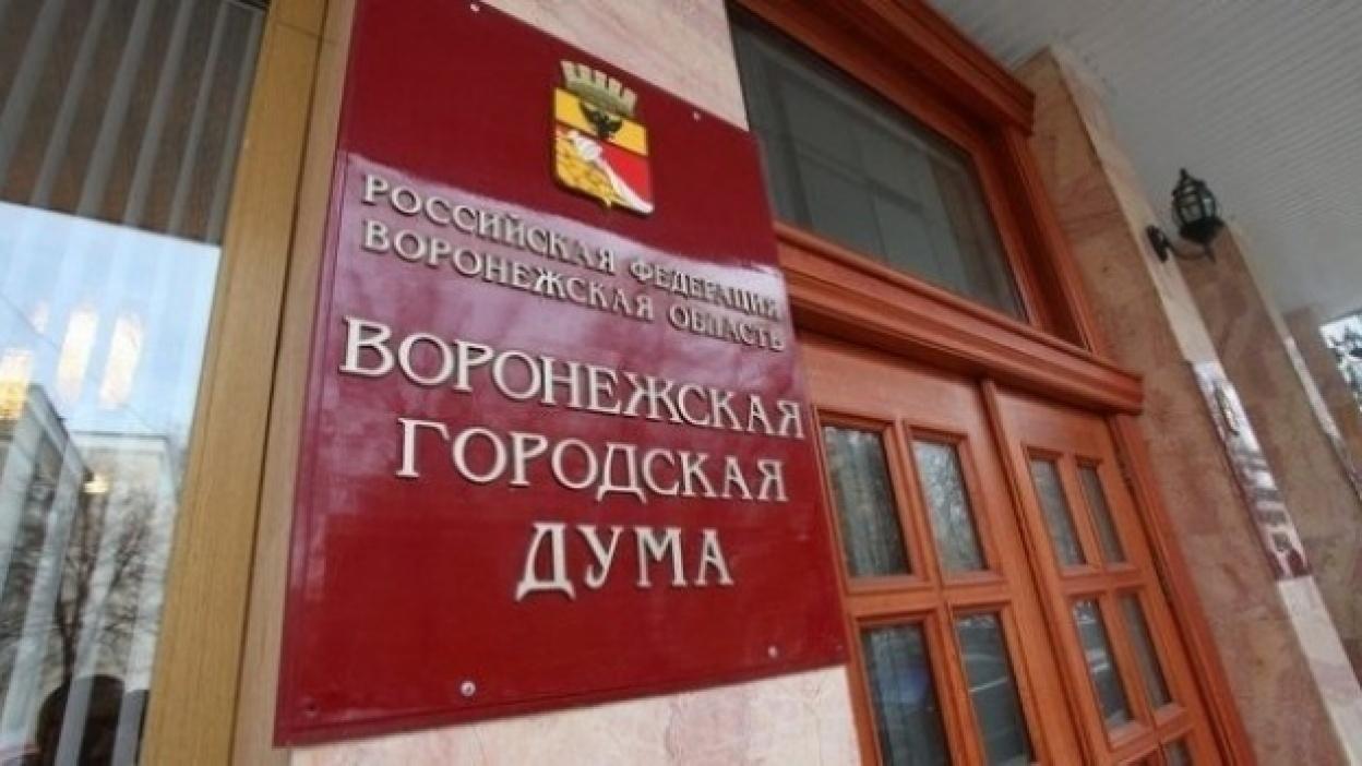 Депутаты гордумы приняли бюджет Воронежа-2015 в первом чтении