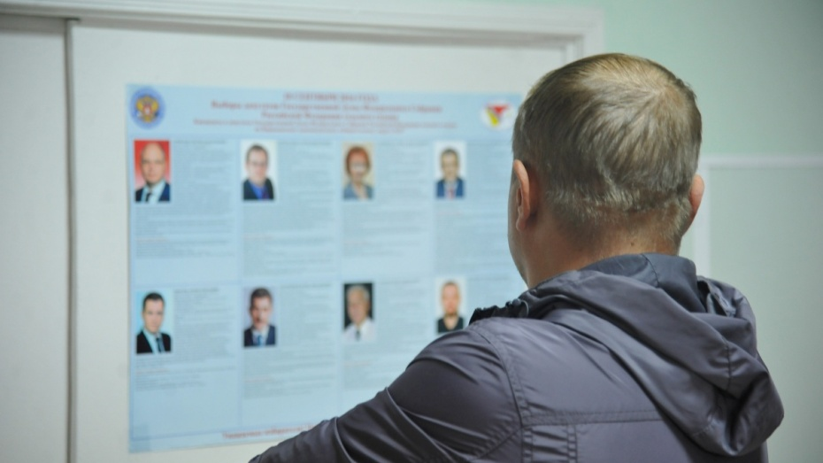 Воронежская область: поодномандатным округам— впереди «единороссы»