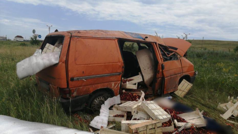 Водитель микроавтобуса Volkswagen погиб после опрокидывания в кювет в Воронежской области