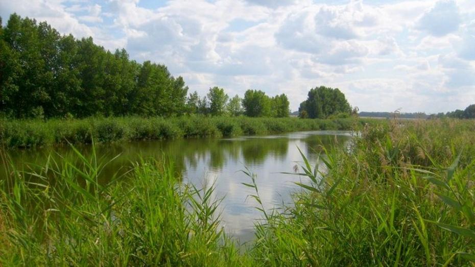 В Воронежской области в реке Дон утонула женщина