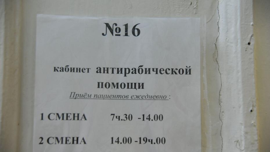 Более 988 тыс жителей Воронежской области привьют от гриппа в 2019 году за счет федбюджета