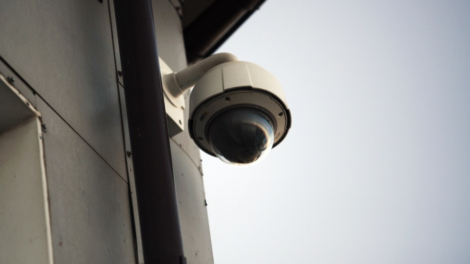 Жители Воронежской области установили более 100 тыс камер для домашнего видеонаблюдения