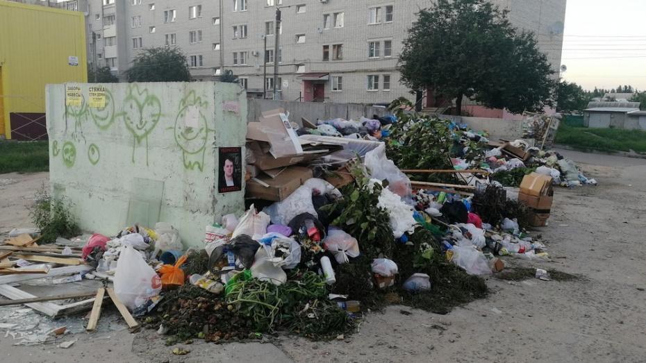 Райцентр под Воронежем погряз в мусоре из-за повышения цен на полигоне