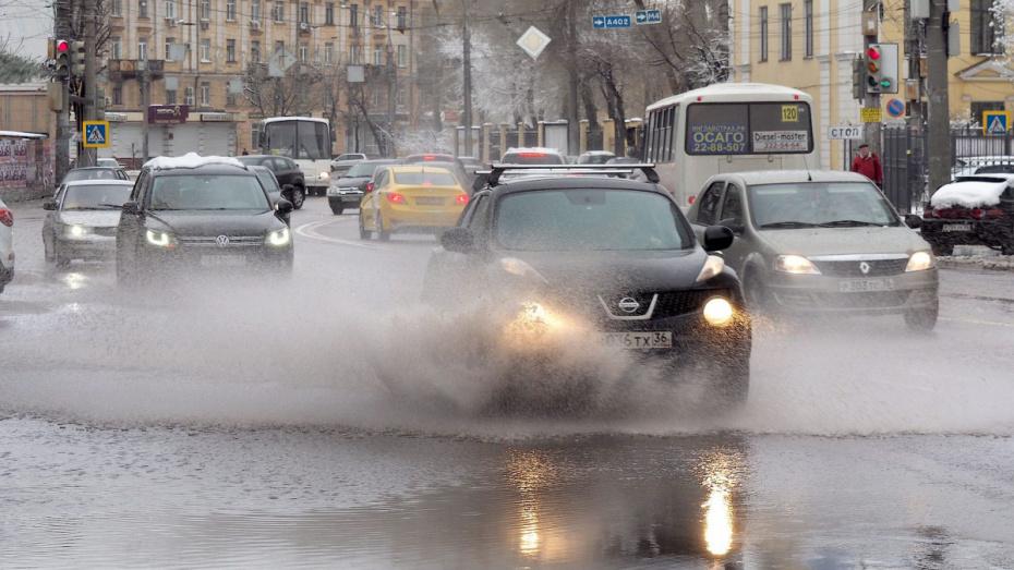 Синоптики спрогнозировали осадки на рабочей неделе в Воронеже