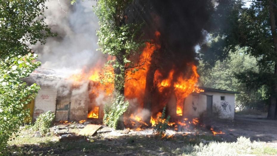 В Воронеже начали снос пожароопасных гаражей и сараев на Ленинградской