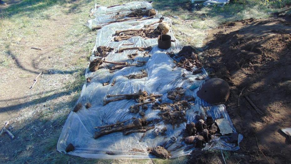Богучарские поисковики обнаружили останки 4 красноармейцев