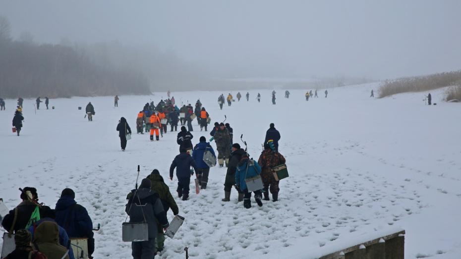 В Грибановском районе начали прием заявок на участие в открытом турнире по зимней рыбалке