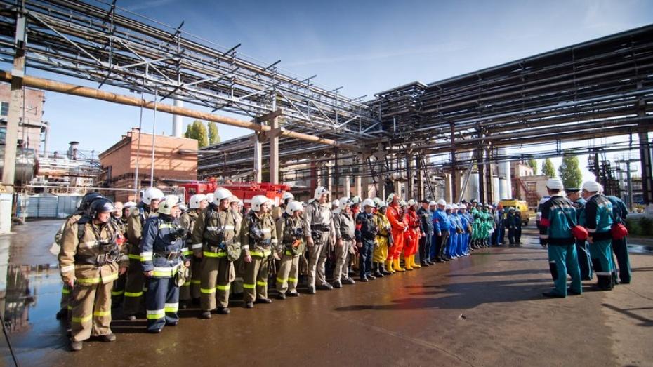 В Воронежской области тушит пожары тысяча добровольцев