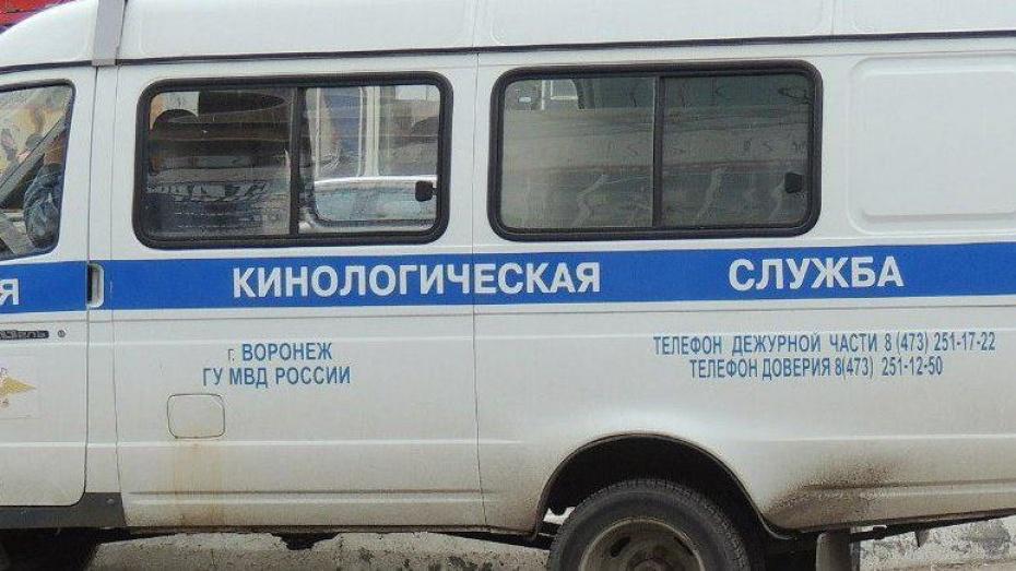 Пьяный воронежец сообщил о бомбе в многоэтажке на улице Артамонова