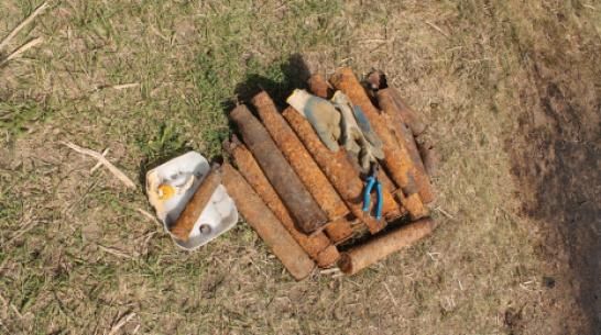 В Хохольском районе уничтожили 8 боеприпасов времен ВОВ