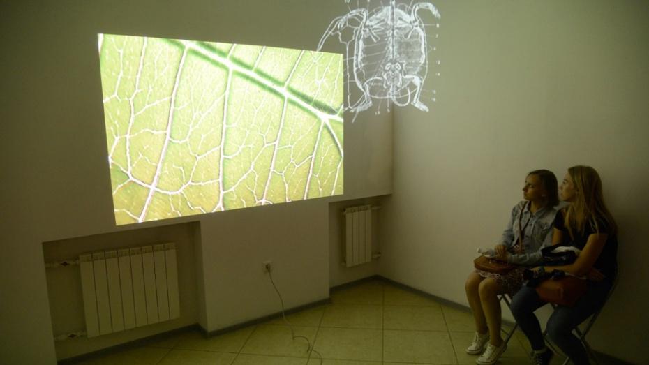 Молодые художницы открыли в Воронеже музей инопланетян