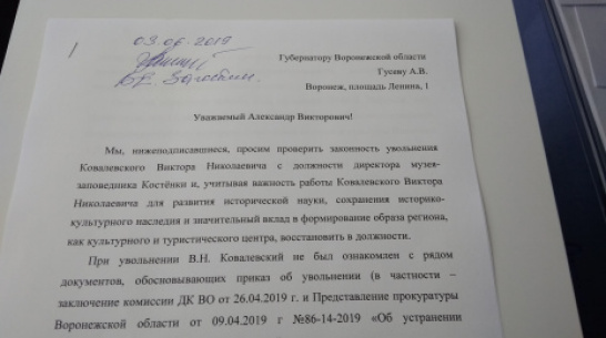 Петицию за экс-директора воронежских «Костенок» подписали более 1,3 тыс человек