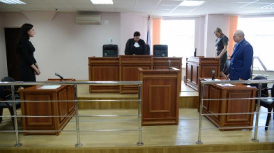Председатель Воронежского облсуда заявил о высокой нагрузке на судей