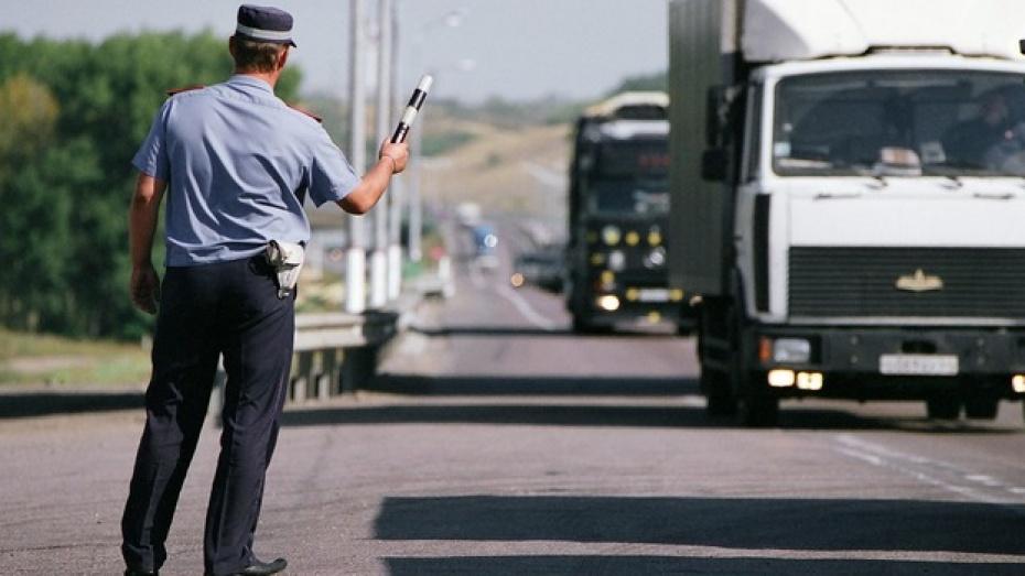 Дополнительные экипажи ДПС предложили разместить возле села Лосево Воронежской области