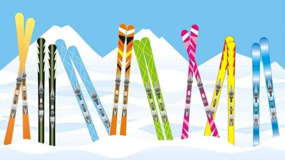 ЛГБТ-активисты организуют «радужную покатушку» на лыжах