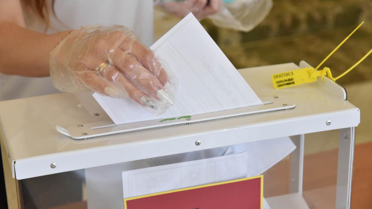 Голосование по поправкам в Конституцию. Текстовая трансляция РИА «Воронеж»
