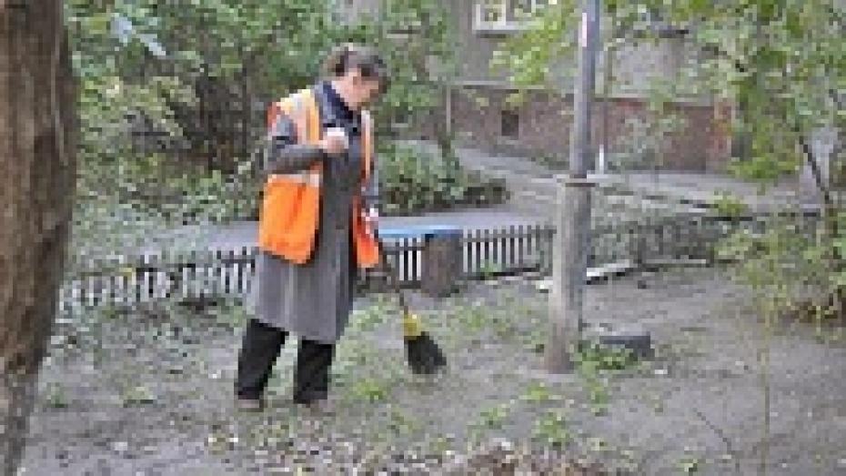 Мэр Воронежа предложил расширить полномочия управ