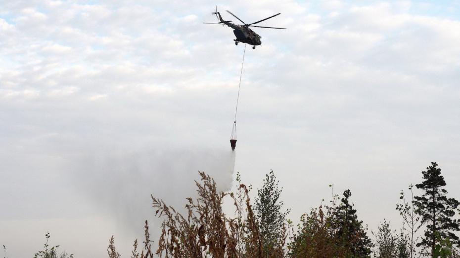 Более 400 природных пожаров потушили в сентябре в Воронежской области