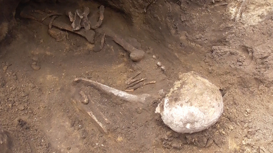 Житель Воронежской области откопал останки древнего человека у себя во дворе