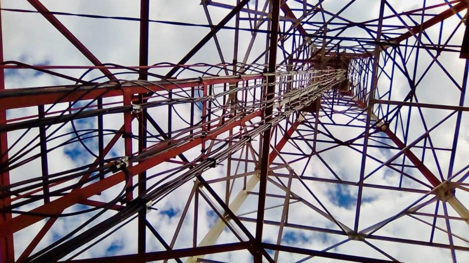 Tele2 расширила зону покрытия 4G в Воронежской области