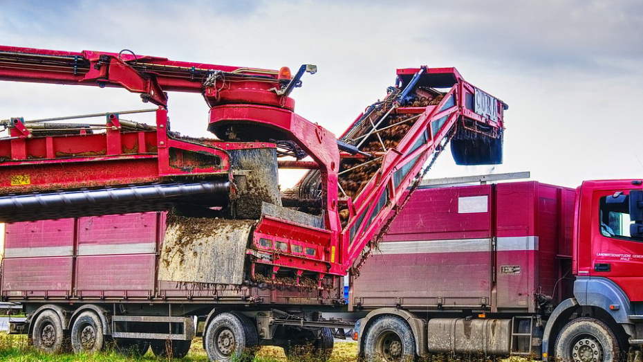 Воронежский «Продимекс» рассказал о рисках необычного сельскохозяйственного года