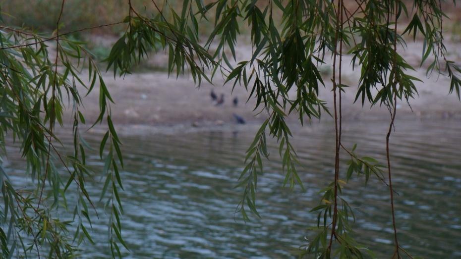 Под Воронежем в озере Круглое утонула 35-летняя женщина