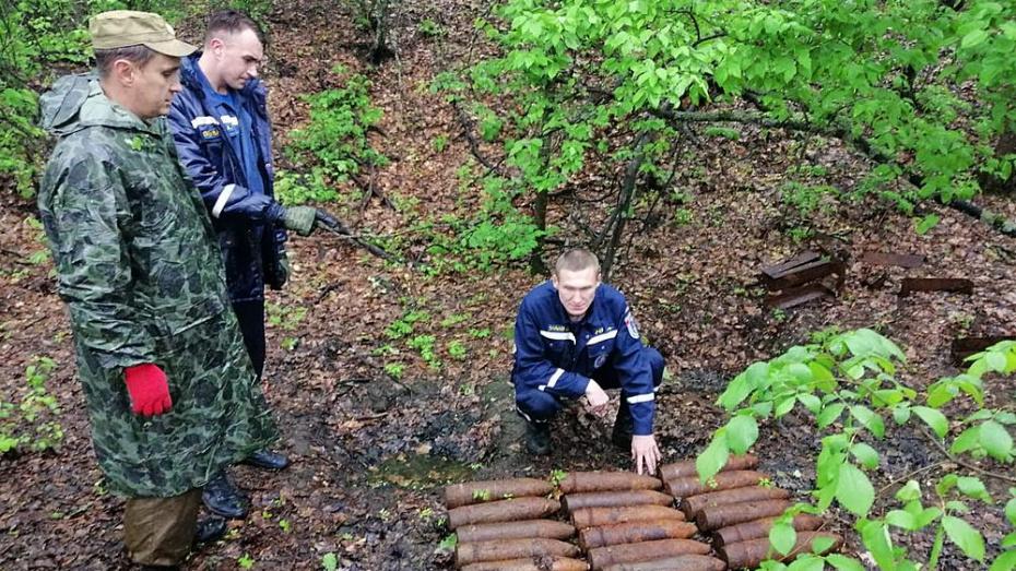 В Подгоренском районе уничтожили 22 боеприпаса времен ВОВ