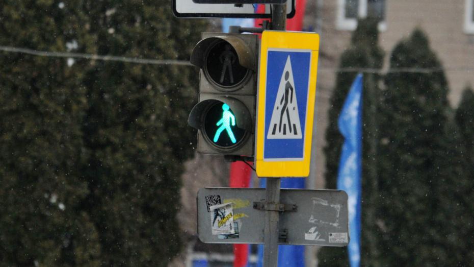 В Воронежской области легковушка сбила женщину с 2-летним сыном на пешеходном переходе