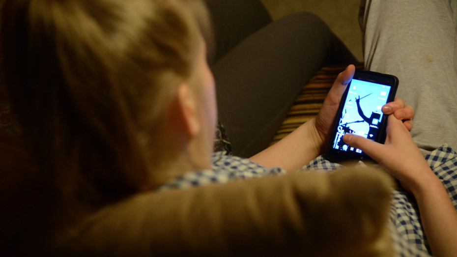 Минюст обрисовал воронежцам схему типичного телефонного мошенничества