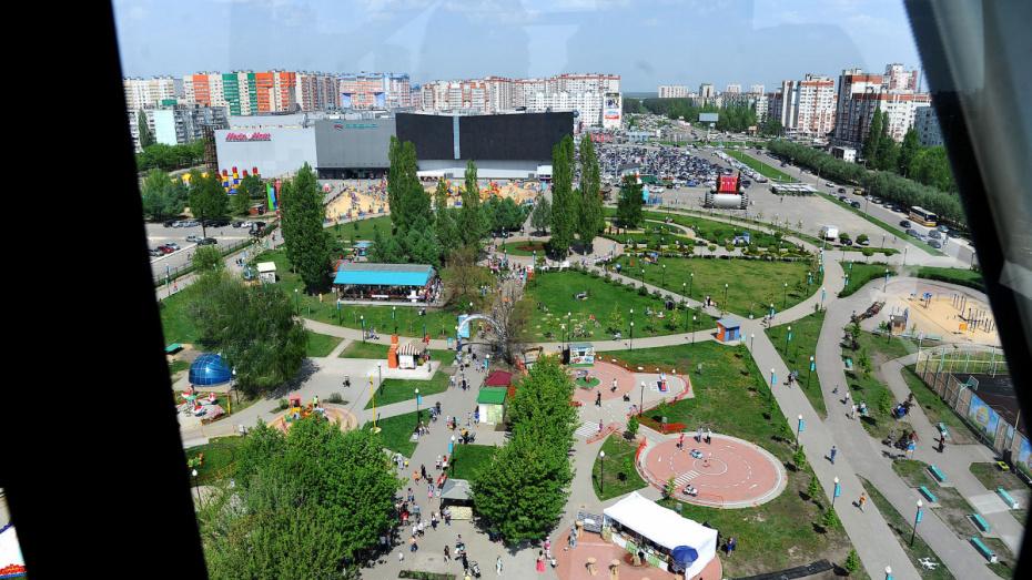 В Воронеже подготовят проект планировки участка возле ТРЦ «Арена»
