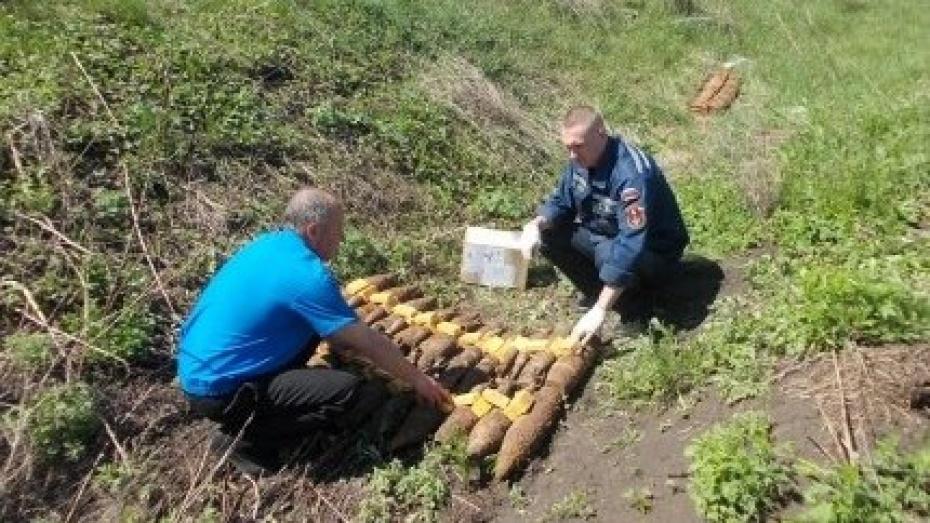 Воронежские взрывотехники уничтожили более 230 боеприпасов времен войны