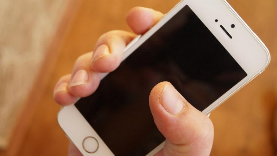 В Лисках воры похитили из чужого дома смартфон