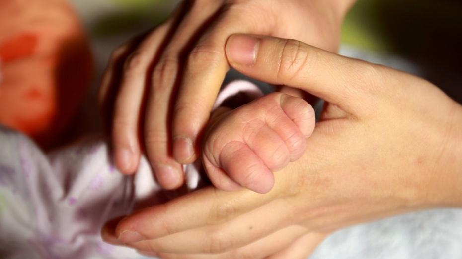 Загод вВоронежской области родились 24,5 тысячи детей