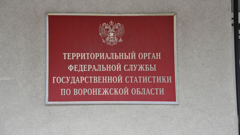 Воронежстат: средняя зарплата в 2019 году выросла до 42 тыс рублей