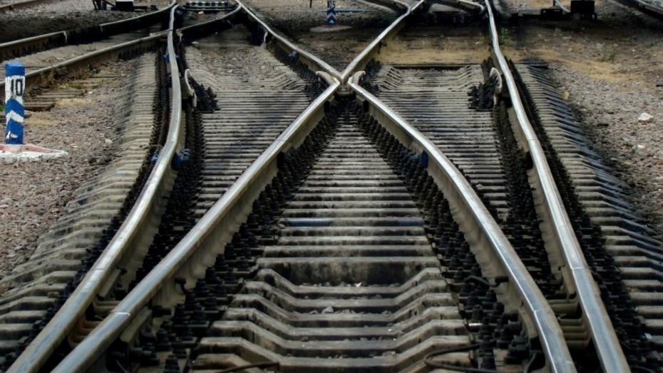 ВВоронежской области грузовой поезд насмерть сбил 66-летнюю женщину