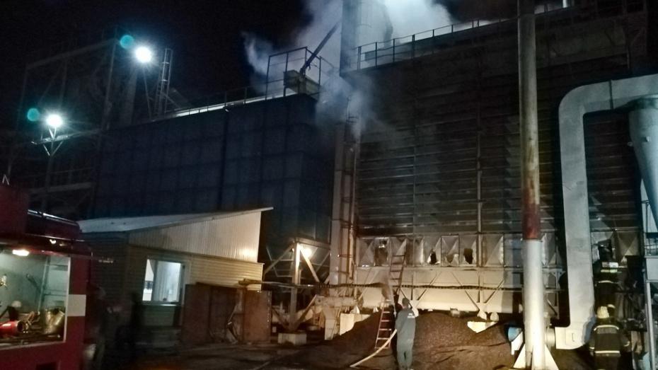 В Борисоглебске на маслозаводе сгорело 25 т семян подсолнечника