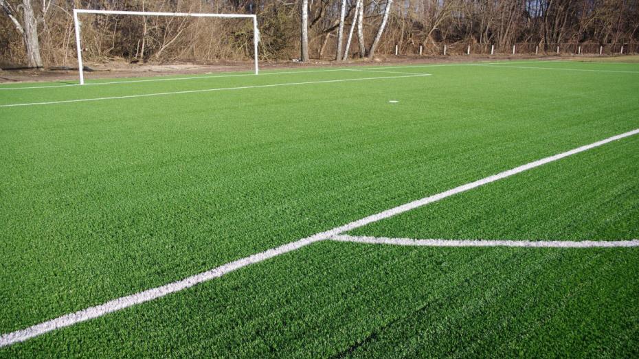 В Воронеже в 2019 году появились 5 футбольных полей