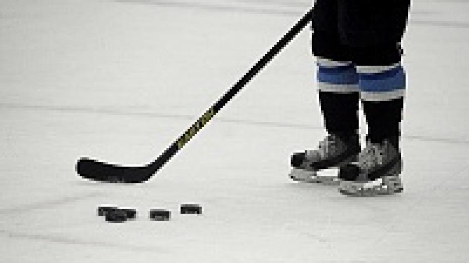 Юные воронежские хоккеисты взяли Кубок Победы в Белоруссии