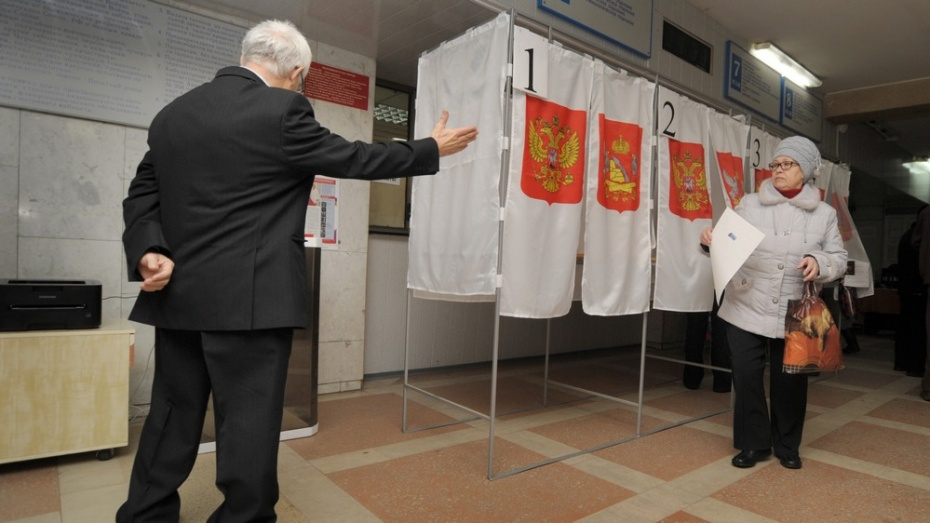 Депутаты снизили до 5% проходной балл для партий в Воронежскую облдуму