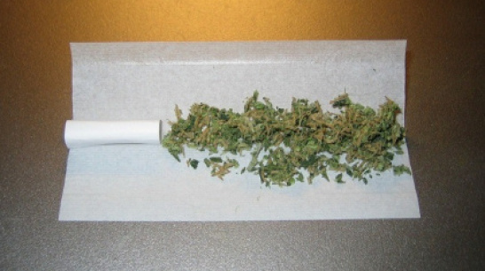 Воронежские таможенники обнаружили марихуану в автобусе из Бердянска